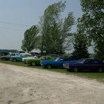 Classic Cars at Jason's Wedding